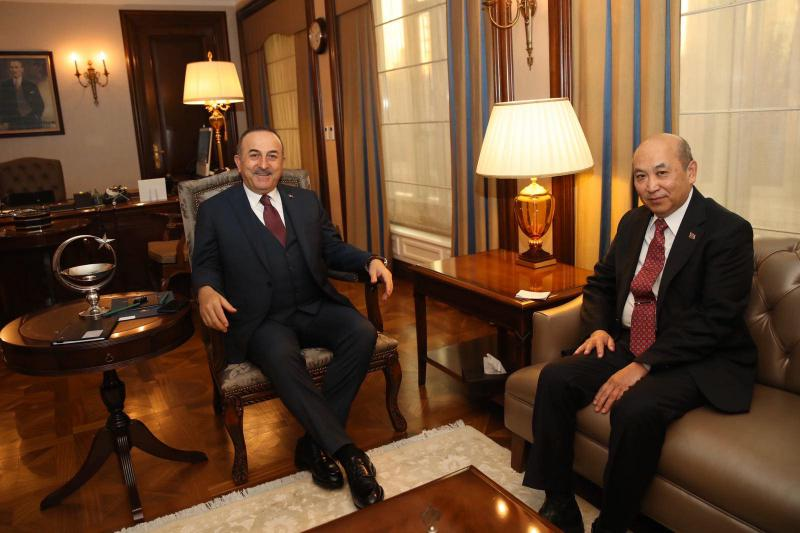 AMBASSADOR MET WITH FOREIGN MINISTER OF TURKEY